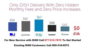 Dish 1800 Number